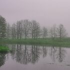 Foggy Pond by DDowning