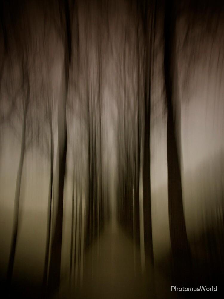 Beyond the light by PhotomasWorld