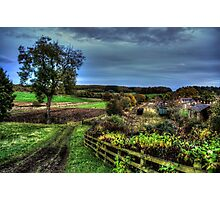 Fields around Beamish Museum Photographic Print