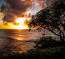 North Shore Sunset by Randy Turnbow