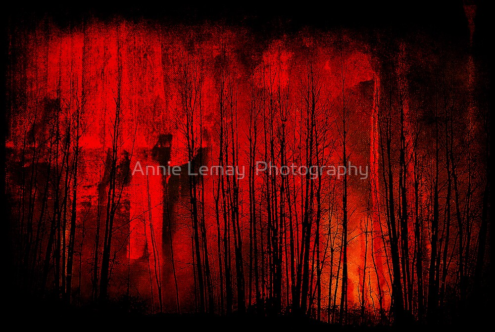 Red Trees by Annie Lemay  Photography