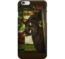 Black cat, green eyes. iPhone Case/Skin
