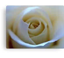White Rose Flower Canvas Print