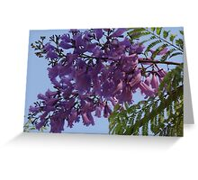 Another Jungle's Beauty - Otra Belleza De La Selva Greeting Card