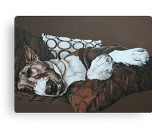 Cushions and Throws Canvas Print