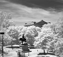 Washington Park Infrared - Kansas City, Missouri by Robert Baker