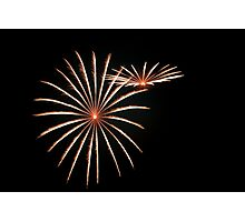 Guy Fawkes Daisies Photographic Print