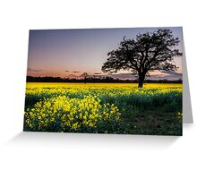 Glowing fields at Dusk Greeting Card
