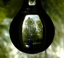 Tree in A Bottle by Themis