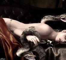 Charmed by Lyndseyh
