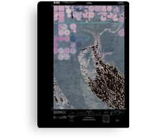 USGS Topo Map Washington State WA Mae 20110425 TM Inverted Canvas Print