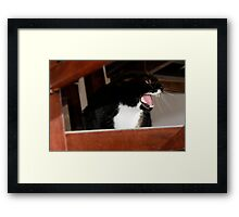 A Bad Day Framed Print