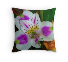 Alstroemeria Flower  Throw Pillow