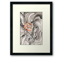 So Like a Rose Framed Print