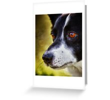 The love in her eyes Greeting Card