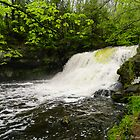 Wadsworth Big Falls by MCloutier85