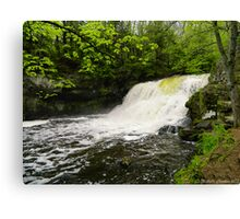 Wadsworth Big Falls Canvas Print