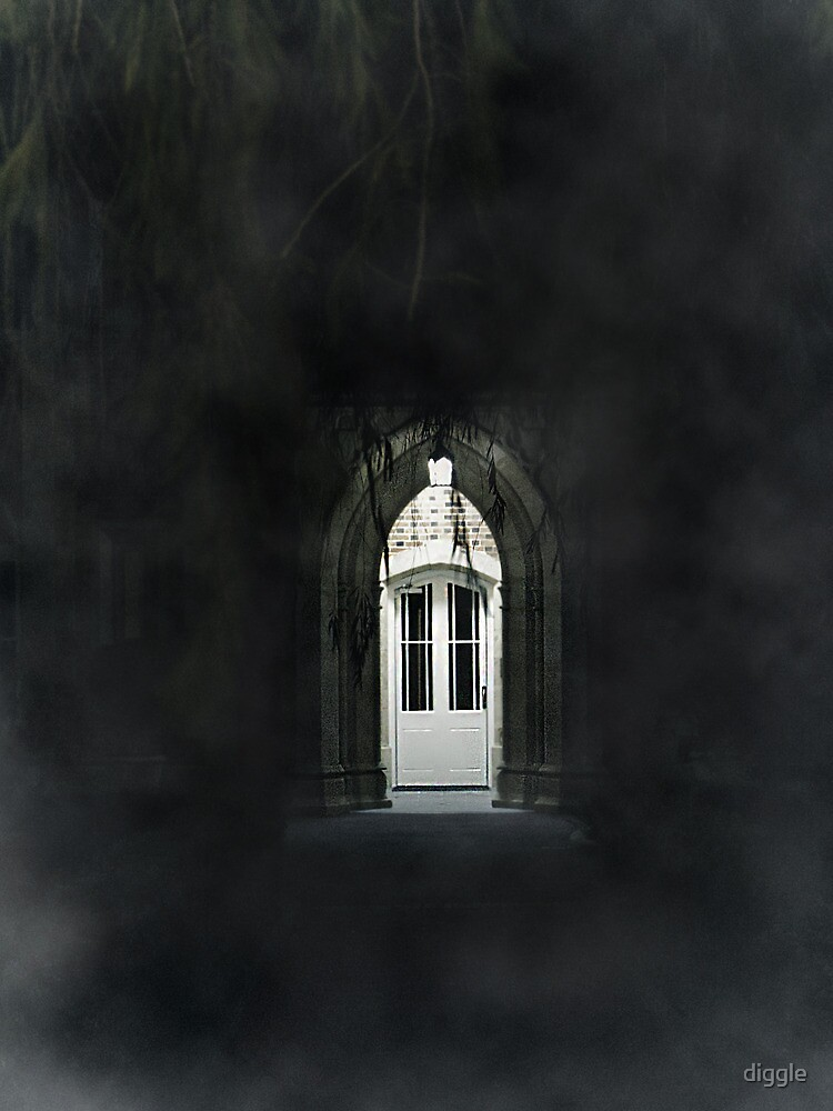 The Portal by diggle