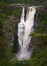Carrington Falls 2012 by Ian Fegent