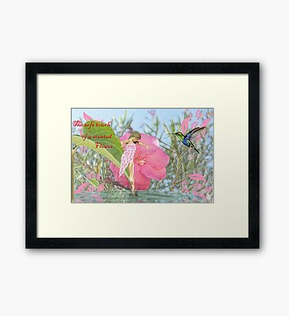 The soft touch of a scented flower. Framed Print
