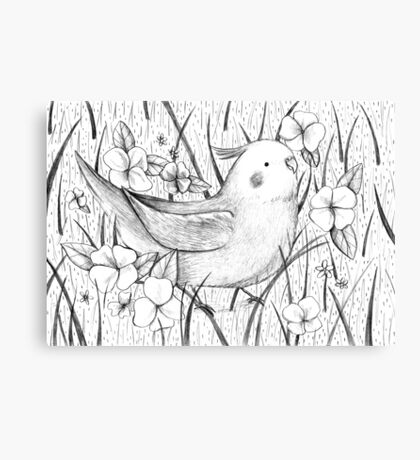 Cockatiel in Grass Canvas Print