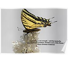 Butterfly Quote Poster