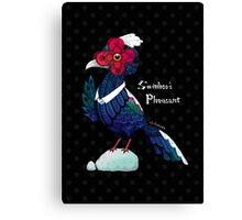 Swinhoes Pheasant - Black Canvas Print
