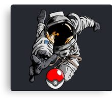 Gotta' Reach Em' All Canvas Print