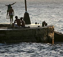 Diving group Havana. by Phil Bower