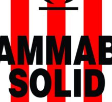 Flammable Solid Sticker