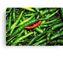 Red on green chilli. Canvas Print