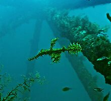 GHOSTS OF THE RIG REEF by NICK COBURN PHILLIPS