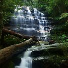 junction Falls by peter  jackson