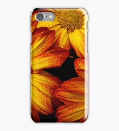 HDR Flowers iPhone Case/Skin