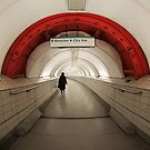 This way for the Waterloo and City Line by Ursula Rodgers