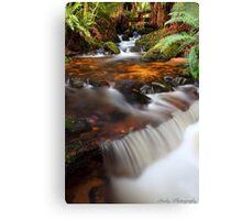 """Forester Cascades"" Canvas Print"