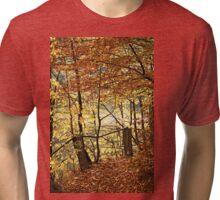 Golden path Tri-blend T-Shirt