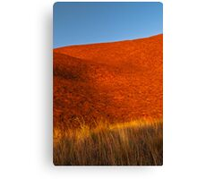 Colours of the Desert Canvas Print