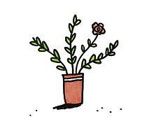 Pretty Plant 1 by Sophie Corrigan
