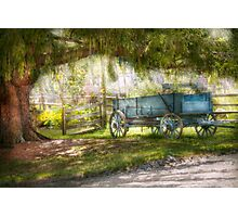 Country - The old wagon out back  Photographic Print