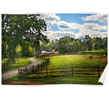 Country - The pasture  Poster