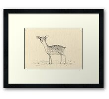 Monochrome Deer Framed Print