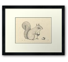 Monochrome Squirrel Framed Print