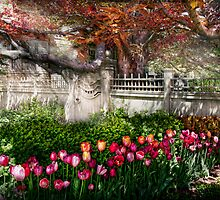 Spring - Gate - My Spring garden  by Mike  Savad