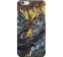 seasons colour iPhone Case/Skin
