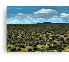 Filled with Sagebrush Canvas Print