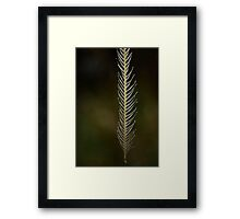 Strong Wisps Framed Print