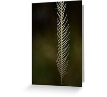 Strong Wisps Greeting Card