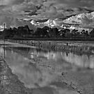 Flooded Pastures by rjpmcmahon