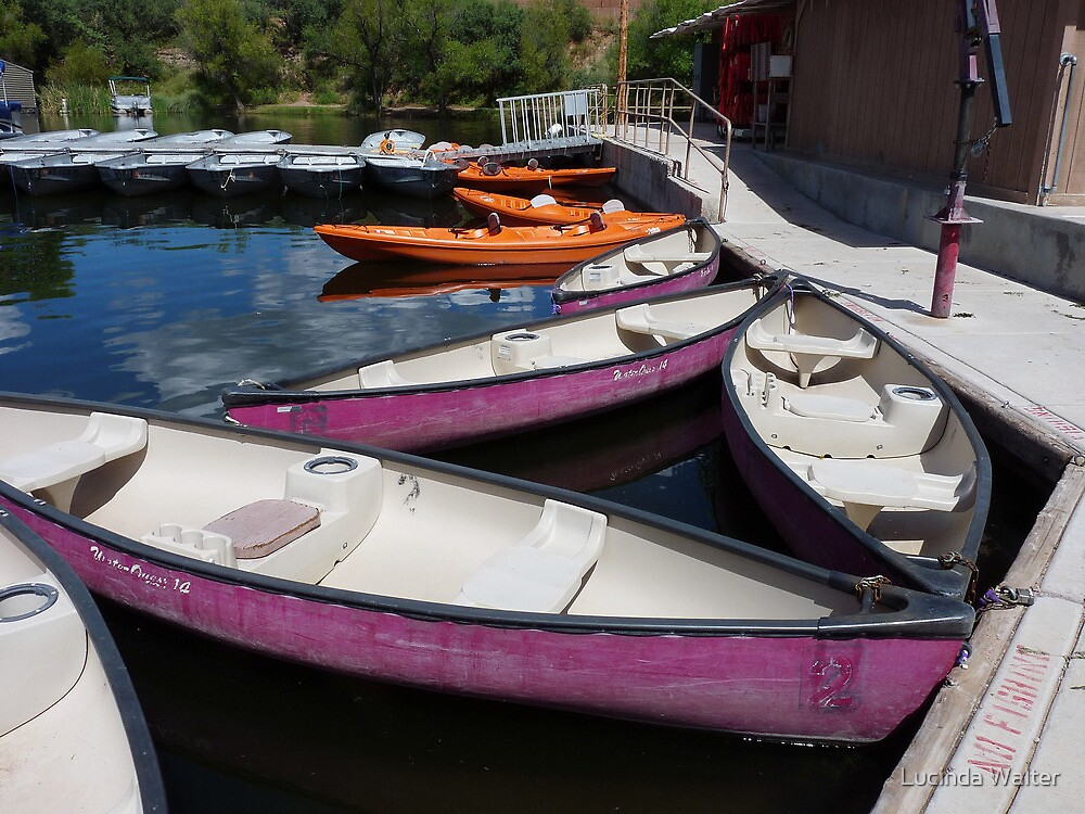 Boats For Rent by Lucinda Walter